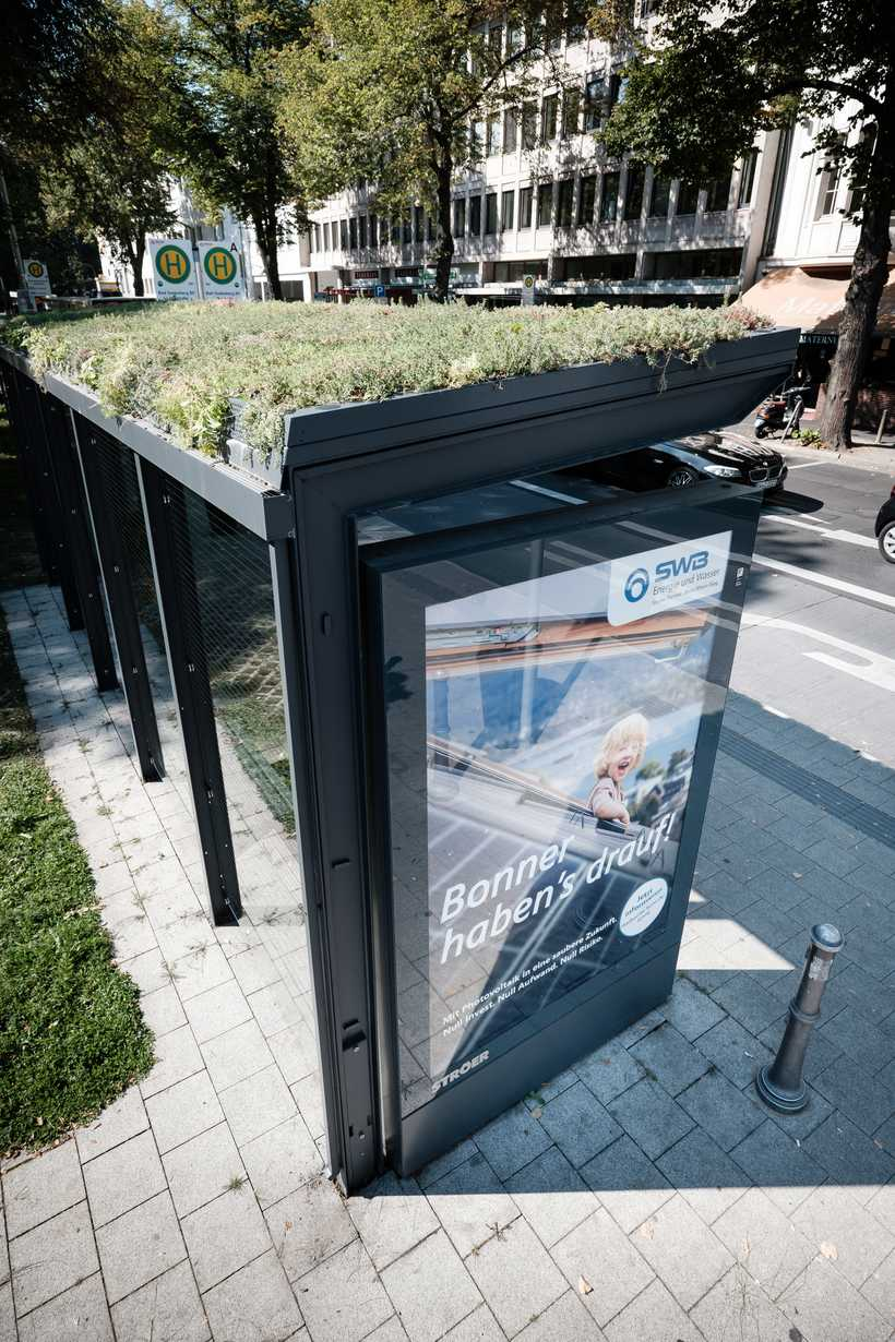Begrünte Haltestelle in der Löbestraße (Foto: Magunia/Stadtwerke)